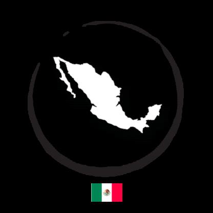 Mexico green coffee beans arabica