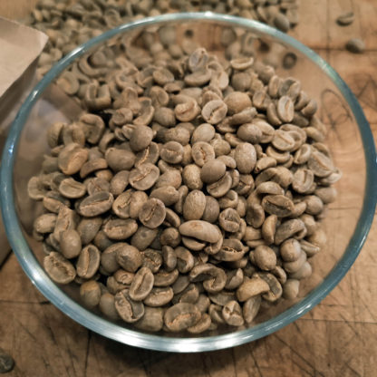 green coffee beans from honduras
