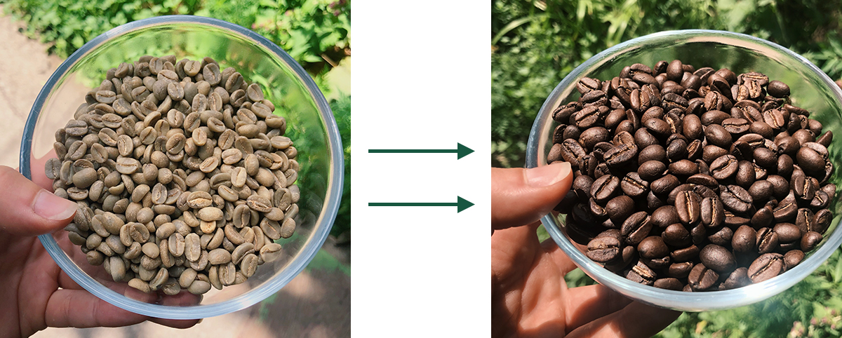 freshness of the roast, defining coffee freshness